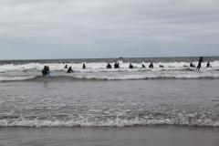 surfing_039