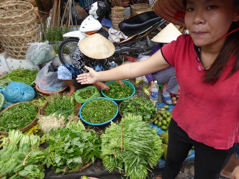 vietnam_0529